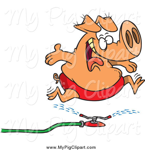 Swine Clipart of a Cartoon Happy Pig Running Through a Sprinkler