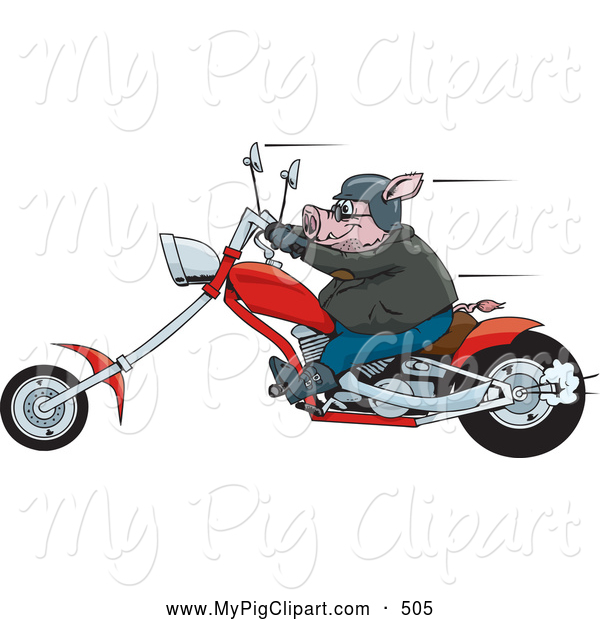 Swine Clipart of a Chubby Tough Hog Riding a Red Chopper Motorcycle and Speeding past
