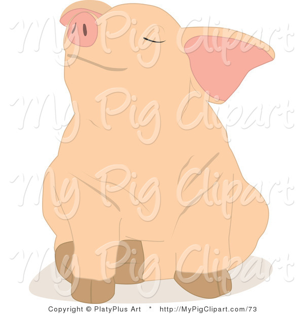 Swine Clipart of a Cute Piglet Sitting down with a Stubborn or Pleased Expression