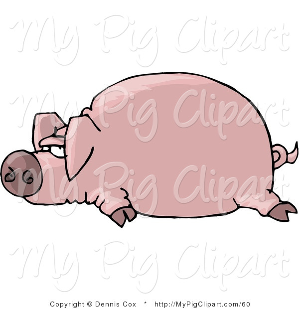 Swine Clipart of a Fat Pink Pig Laying on the Ground with Legs out by His Sides