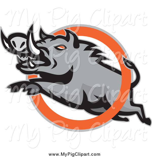 Swine Clipart of a Mad Razorback Boar Leaping Through an Orange Ring