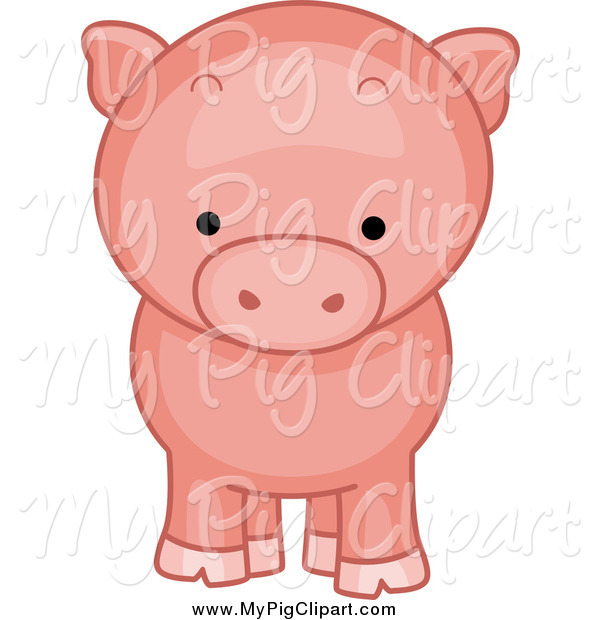 Swine Clipart of a Piggy from the Front