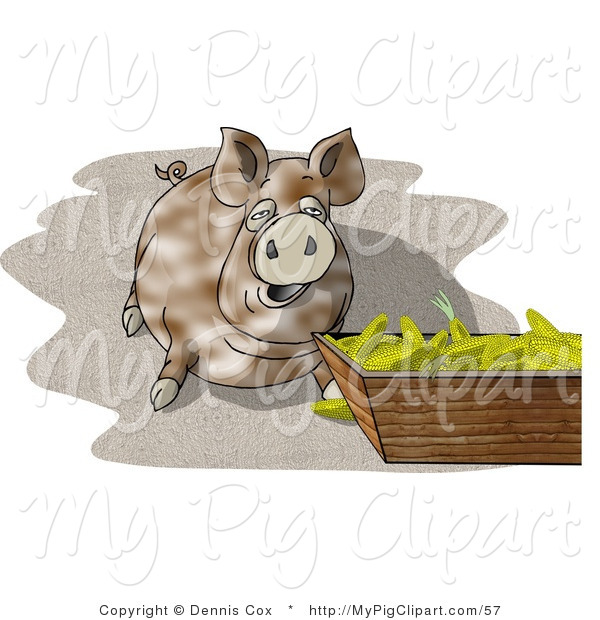 Swine Clipart of a Pot-bellied Pig Beside a Feeding Container Full of Ears of Corn