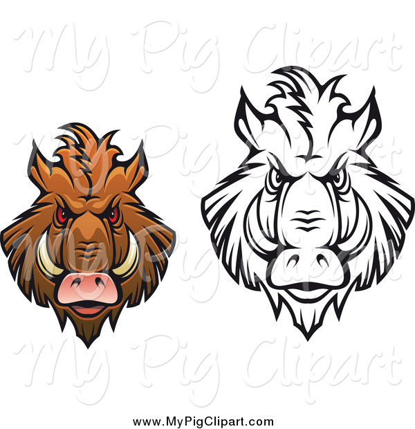 : Swine Clipart of Black and White and Brown Angry Boar Heads