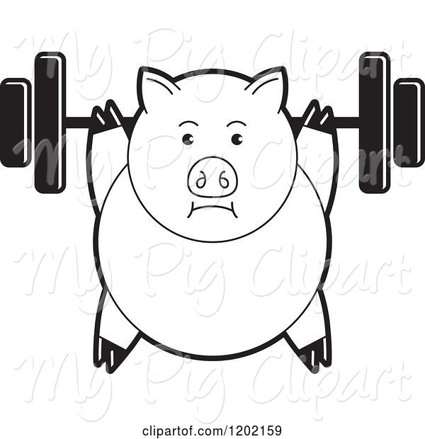 Swine Clipart of Black and White Fit Pig Exercising with a Heavy Barbell