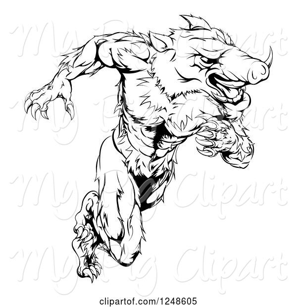 Swine Clipart of Black and White Muscular Aggressive Boar Mascot Running Upright