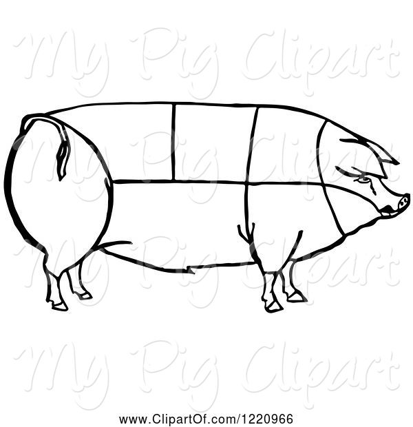Swine Clipart of Black and White Pig Showing Cuts of Pork