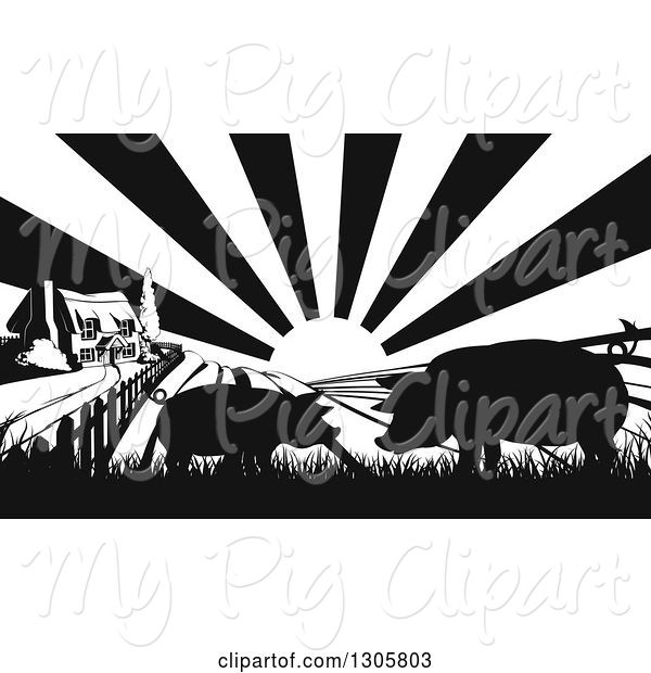 Swine Clipart of Black and White Sunrise over a Farm House with Silhouetted Pigs and Fields