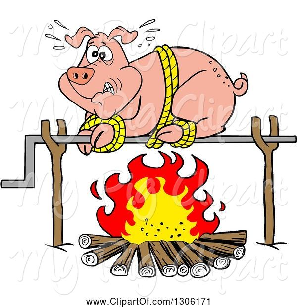 : Swine Clipart of Cartoon Scared Pig on a Spit over a Fire