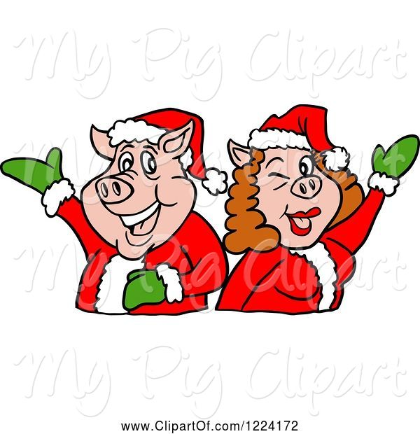 Swine Clipart of Christmas Pig Couple Presenting