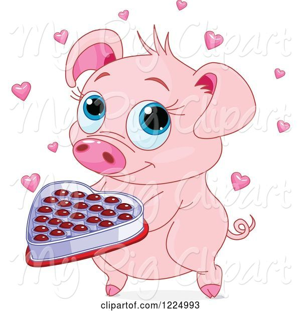 Swine Clipart of Cute Pig Holding Valentines Day Chocolates
