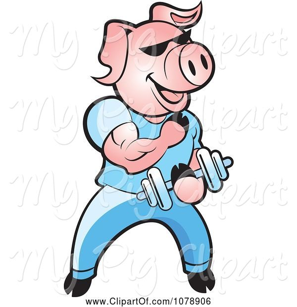 Swine Clipart of Pink Bodybuilder Pig Lifting Weights