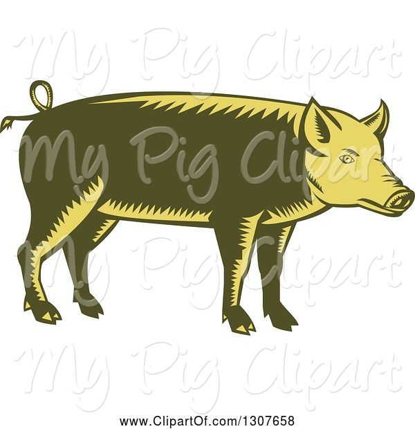 Swine Clipart of Retro Woodcut Green and Yellow Pig in Profile