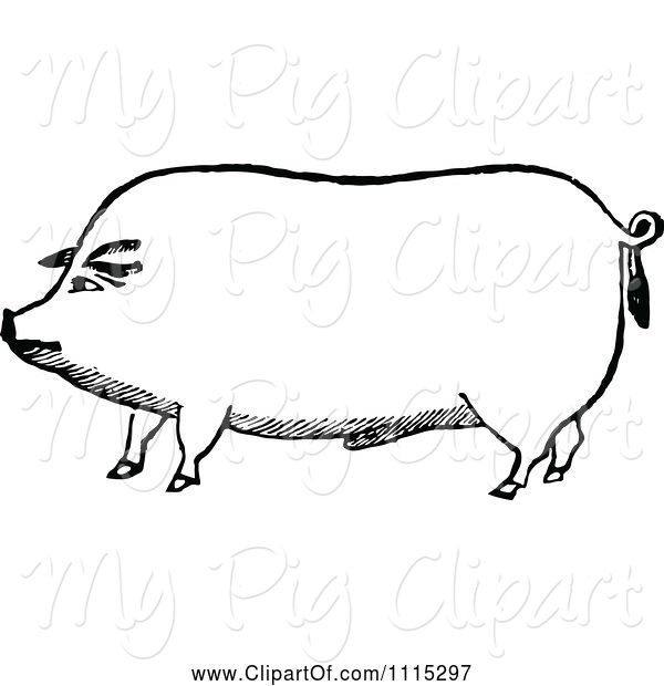 Swine Clipart of Vintage Black and White Pig