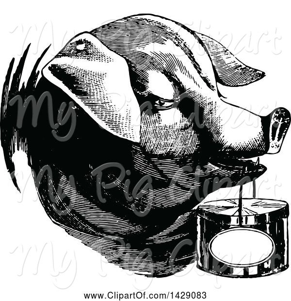 Swine Clipart of Vintage Black and White Pig Carrying a Basket