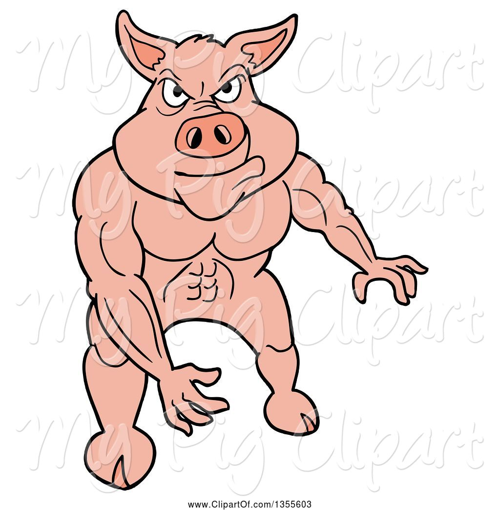 swine clipart of cartoon buff pig flexing his muscles by lafftoon
